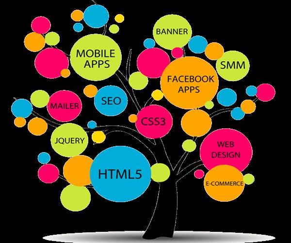 Website design in Udaipur